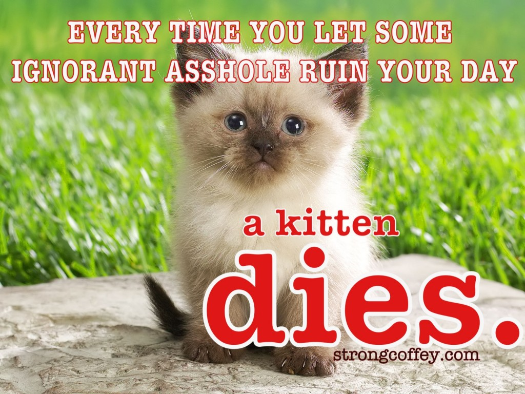 Save the kittens.